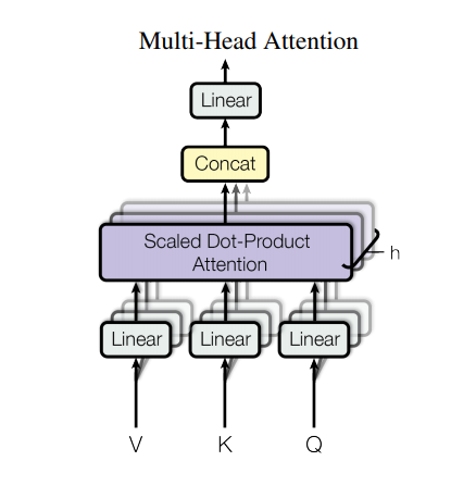 multi-head attention