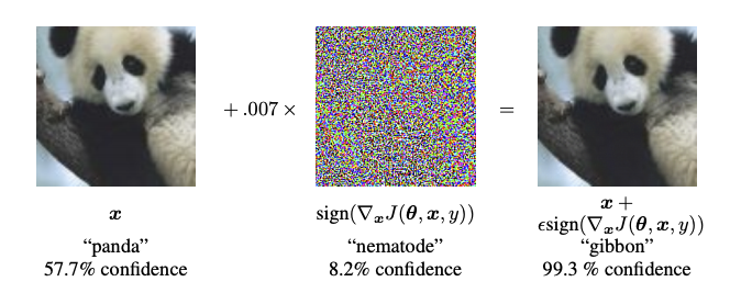 Adversarial Example
